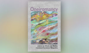 cover of 'oneiromancy'