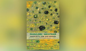 "Cover of ""Chameleon/ Nachtroer"" by Charlotte Van Den Broeck, translated by David Colmer."